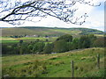 NY7286 : View towards Stannersburn by Les Hull