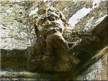 SO9700 : Anthropophagous grotesque, St Matthew's church, Coates by Brian Robert Marshall