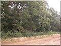 SE9445 : Dalton Wood by JThomas