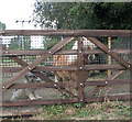 TG3903 : A well guarded gate by Evelyn Simak