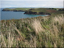 SW9580 : Port Quin Bay viewed from near Carnweather Point by Philip Halling