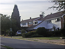 TQ1463 : Brendon Drive Claygate by David Howard