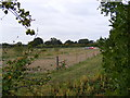 TG0524 : New fencing in a field off Reepham Road by Adrian Cable