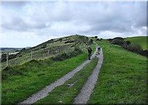 SY9282 : Ridgeway Hill by Pierre Terre