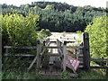 SE8495 : Footbridge near Needle Eye by John S Turner