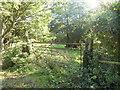 TM3490 : Gate into unused field by Ashley Dace