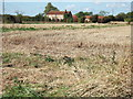 TF4416 : Stubble field near Four Gotes by Richard Humphrey