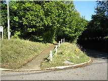 TQ2151 : Path by Station Road by don cload