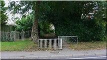 SU8135 : Footpath at Lindford by Shazz