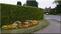 SU8135 : Well kept flowerbed at Lindford by Shazz