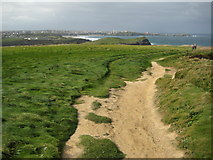 SW8363 : South West Coast Path at Whipsiderry by Philip Halling