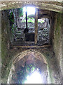 TF6626 : The ruined church of St Felix - view up the tower by Evelyn Simak