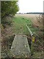 TL9059 : Footbridge by Keith Evans