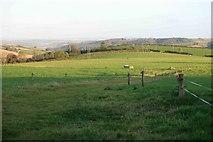 SX3257 : Rural East  Cornwall by roger geach