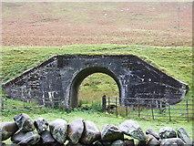 NT1126 : Animal Underpass...beneath disused Railway by norman hyett