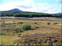 NN7754 : Moorland near Loch Kinardochy by Maigheach-gheal