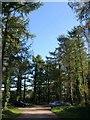 SX5459 : Woodland car park, Cann Wood by Derek Harper