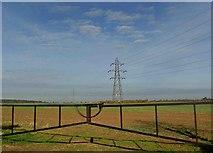 SK7060 : Gate and pylons by Steve  Fareham