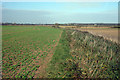 TQ9728 : Field and Drainage Ditch at Walland Marsh by Oast House Archive