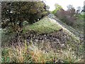 NY5859 : Missing bridge on Lord Carlisle's Railway by Oliver Dixon