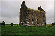 R7028 : Castles of Munster: Ballynahinch, Limerick (1) by Mike Searle