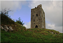 R6246 : Castles of Munster: Rockstown, Limerick by Mike Searle
