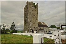 R4138 : Castles of Munster: Lissamota, Limerick (2) by Mike Searle