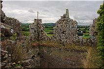 R4138 : Castles of Munster: Lissamota, Limerick (3) by Mike Searle