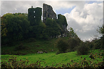 R4955 : Castles of Munster: Carrigogunnell, Limerick (1) by Mike Searle