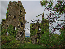 R4955 : Castles of Munster: Carrigogunnell, Limerick (2) by Mike Searle