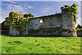 S0214 : Castles of Munster: Castle Grace, Tipperary (2) by Mike Searle
