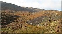 NN9040 : Moorland, Glen Cochill by Richard Webb