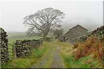 NY4002 : Fell Lane, Town End by Peter Trimming