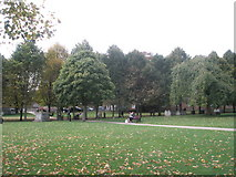 SU4829 : Autumn in the grounds of Winchester Cathedral by Basher Eyre