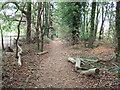 TF6819 : Footpath near the reservoirs by Richard Humphrey