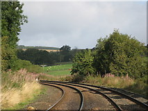 NY6565 : Railway tracks south of Longbyre by Mike Quinn