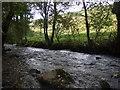 SN0034 : Afon Gwaun at Cilrhedyn by ceridwen