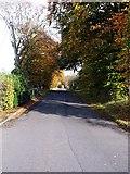 NS7671 : Hulks Road by Robert Murray