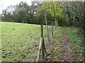 SJ9791 : Footpath to Etherow Country Park by Chris Wimbush