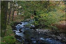 SH6129 : The Afon Artro near Crafnant by Nigel Brown