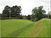 NY6366 : The north defensive ditch of Hadrian's Wall east of Gilsland by Mike Quinn