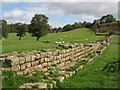 NY6366 : Hadrian's Wall and pastures at Gilsland (3) by Mike Quinn