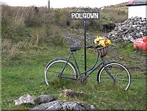 NS7103 : Bicycle as planter, Polgown by Oliver Dixon