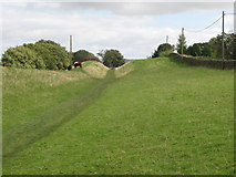 NY6366 : The north defensive ditch of Hadrian's Wall east of Gilsland (3) by Mike Quinn