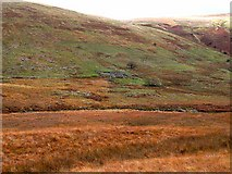 NS7503 : Old walls in Scaur Water Glen by Oliver Dixon