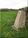 SX1698 : Trig point near West Dizzard by Philip Halling