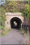 TQ6174 : Foot tunnel in railway embankment by David Anstiss