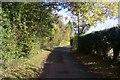 TR0353 : Shottenden Lane by David Anstiss