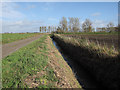 TL5780 : Ditch by Swasedale Drove by Hugh Venables