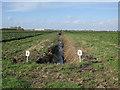 TL5780 : Ditch in Swasedale Fen by Hugh Venables
